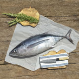 Albacore fish recently Royalty Free Stock Photos