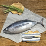 Albacore freshly caught Stock Photo
