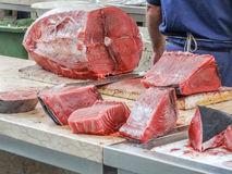 Albacore preparation Royalty Free Stock Images
