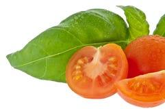 Albahaca con el pequeño tomate (con el camino de recortes) Fotografía de archivo
