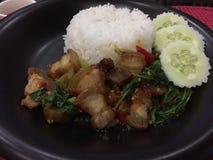 Albahaca curruscante del cerdo del arroz Foto de archivo libre de regalías