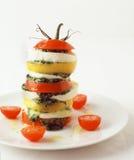 Albahaca del tomate de la mozarela de la ensalada Imagen de archivo libre de regalías
