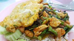 Albahaca dulce del pollo tailandés con arroz y omlet Imágenes de archivo libres de regalías
