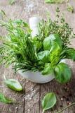 Albahaca, tomillo, romero y estragón Cuenco del mortero con las hierbas aromáticas frescas para cocinar imagen de archivo
