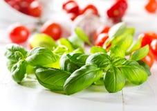 Albahaca verde fresca con los tomates de cereza Fotos de archivo libres de regalías