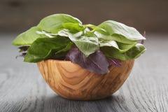 Albahaca verde y violeta fresca en cuenco de madera encendido Imagen de archivo libre de regalías