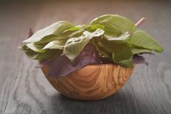 Albahaca verde y violeta fresca en cuenco de madera encendido Imagenes de archivo