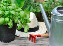 Albahaca y accesorios que cultivan un huerto Imagen de archivo