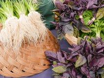 Albahaca y cebolletas púrpuras imagen de archivo