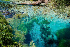 2016, Albanië, Syri en kalter mooi turquise water stock foto's