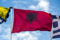 albania flagga Arkivfoto