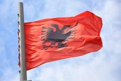 albanian flagga Royaltyfri Fotografi