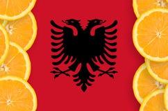 Albanien flagga i vertikal ram för citrusfruktskivor royaltyfria foton