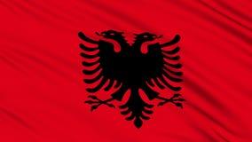 Albanische Flagge. stock video footage