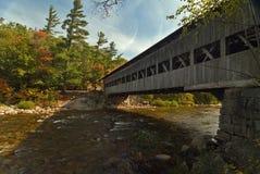 Albany Bridge Royalty Free Stock Image