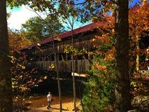 Albany flod täckt bro Fotografering för Bildbyråer