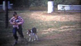 ALBANY, NY De V.S. - 1953: Lassie die als hond kijken die kinderen achtervolgen rond de werf, wie achtervolgt wie? stock videobeelden