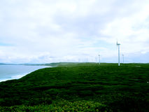Albany Wind Farm Eolian generator park, Australia Stock Images
