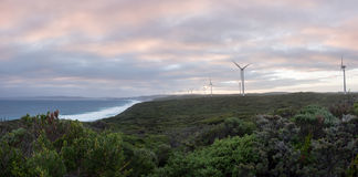 Albany wind farm panorama, Western Australia. Albany wind farm panorama at sunset, Western Australia Stock Image