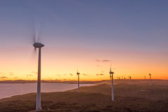 Albany Wind Farm Sunset Stock Photography