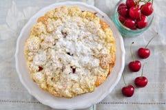 Albaricoque Cherry Streusel Cake Fotos de archivo libres de regalías