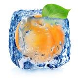 Albaricoque en cubo de hielo Imagen de archivo libre de regalías