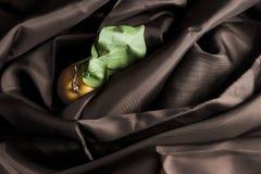 Albaricoque en el satén de Brown Foto de archivo libre de regalías
