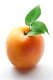 Albaricoque. Fruta con las hojas en un fondo blanco. Fotografía de archivo libre de regalías