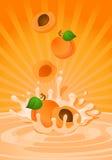 Albaricoque sabroso en yogur Imágenes de archivo libres de regalías