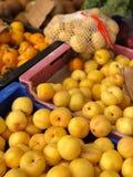 Albaricoques amarillos fotografía de archivo