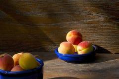 Albaricoques, encendidos por el sol Fotografía de archivo libre de regalías