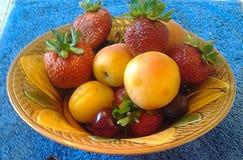 Albaricoques, melocotones, fresas y cerezas fotografía de archivo