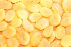 Albaricoques secados Imagen de archivo