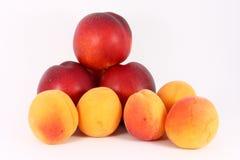 Albaricoques y nectarinas Imagen de archivo libre de regalías