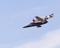 albatros野马飞机 免版税库存照片