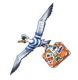 Albatros Fotos de archivo
