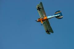 Albatros D Reproducción del Va Imagen de archivo libre de regalías
