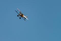 Albatros D Reproducción del Va Fotos de archivo libres de regalías