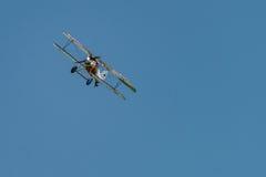 Albatros D Reproducción del Va Imágenes de archivo libres de regalías