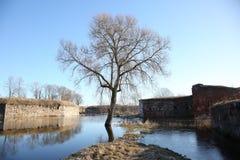 Albe della fortezza di Daugavpils Immagine Stock