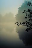Albeggi nel parco Woking Surrey Inghilterra di Goldsworth nel lago nebbioso nella d Fotografie Stock