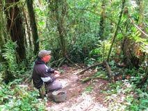 Albeiro (whisperer antpitta), Ρίο Blanco, Κολομβία στοκ εικόνα με δικαίωμα ελεύθερης χρήσης