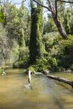Alberche riverbank in Toledo, Castilla La Mancha, Spain Royalty Free Stock Photos