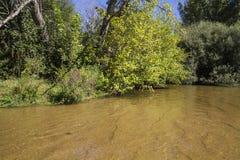 Alberche riverbank in Toledo, Castilla La Mancha, Spain Stock Photography