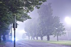 Alberi alla notte nella nebbia Fotografia Stock