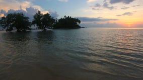 Alberi alla spiaggia tropicale nel bello tramonto video d archivio