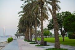 Alberi allineati della palma da datteri nel parco dell'insenatura Fotografie Stock Libere da Diritti