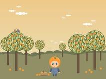 Alberi arancioni Immagini Stock Libere da Diritti
