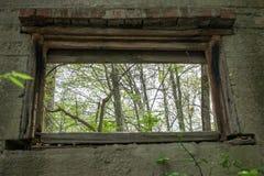 Alberi attraverso una finestra di una Camera abbandonata immagine stock