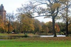 Alberi in autunno a Liverpool Immagini Stock Libere da Diritti